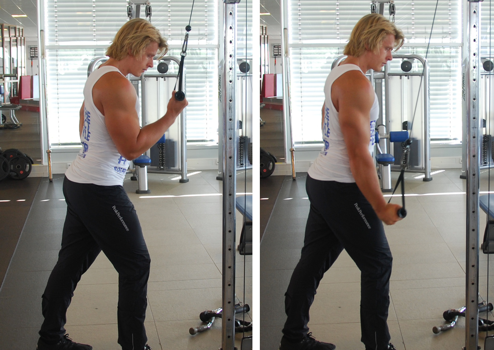 One arm reverse pully pushdowns
