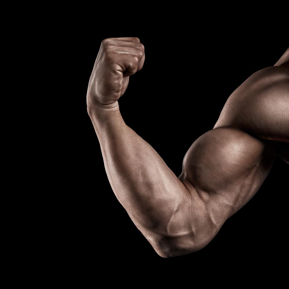 Tips voor het trainen van de biceps