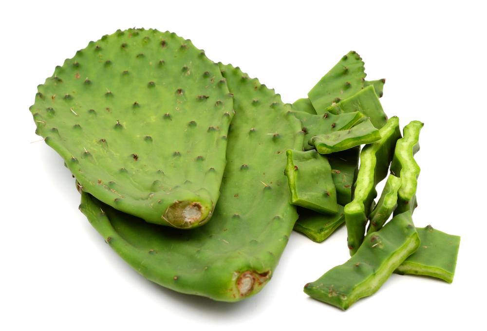 De rol van cactus in gewichtsverlies