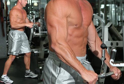 Triceps Pushdown (stang)